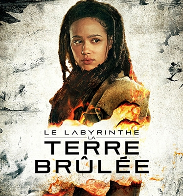 17-le-labyrinthe-terre-brûlée-2015-petitsfilmsentreamis.net-optimisation-image-google-wordpress