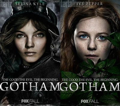 12-gotham-series-petitsfilmsentreamis.net-optimisation-image-google-wordpress