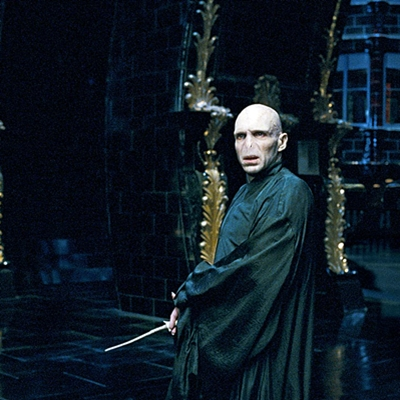 11-Harry-Potter-et-l-ordre-du-phoenix-petitsfilmsentreamis.net-optimisation-image-google-wordpress