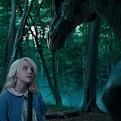 15-Harry-Potter-et-l-ordre-du-phoenix-petitsfilmsentreamis.net-optimisation-image-google-wordpress