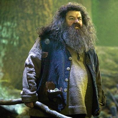 2-Harry-Potter-et-l-ordre-du-phoenix-petitsfilmsentreamis.net-optimisation-image-google-wordpress