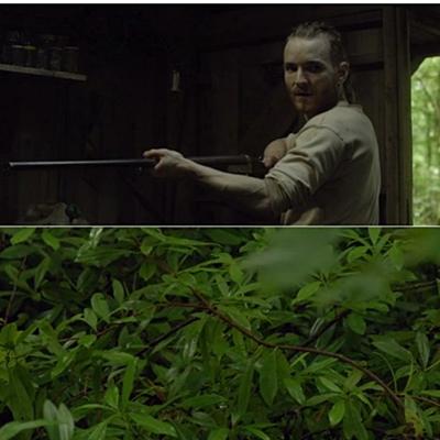 19-The-Survivalist-2015-film-petitsfilmsentreamis.net-optimisation-image-google-wordpress.jgp