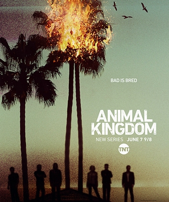 ANIMAL KINGDOM – 2016