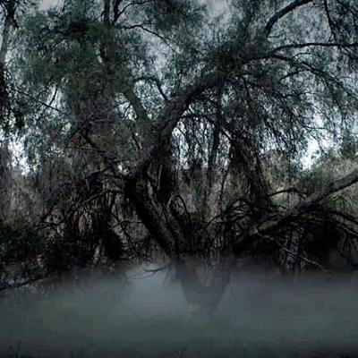 14-american-horror-story-season-6-petitsfilmsentreamis-net-optimisation-image-google-wordpress