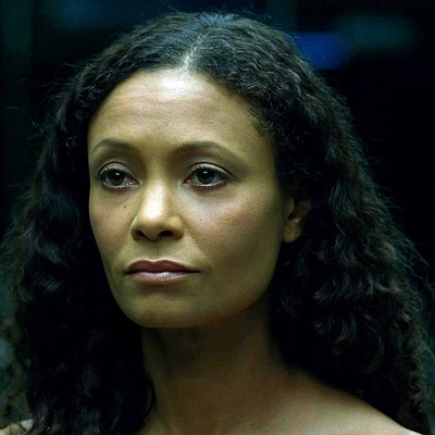 14-westworld-tv-serie-petitsfilmsentreamis-net-optimisation-image-google-wordpress