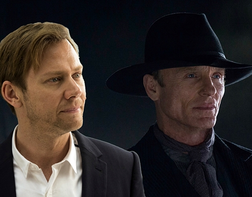 5-westworld-tv-serie-petitsfilmsentreamis-net-optimisation-image-google-wordpress